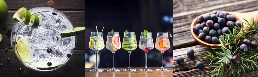 WinesDirect | Gin and Tonic Varieties